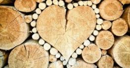 Welches Holz Schwenkgrill